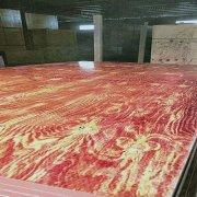 广西千亿体育平台铁红面建筑模板