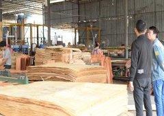 南宁地区千亿体育平台厂-广西板材供应厂家