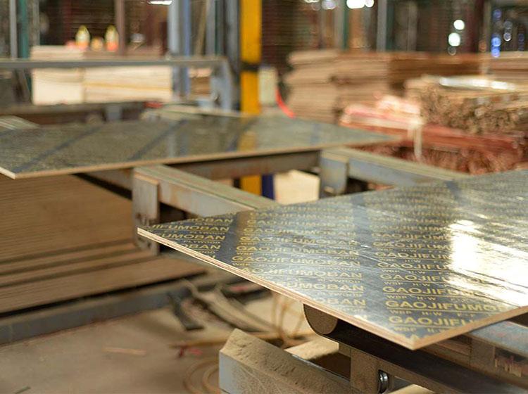 专*业生产多层板材-广西黑豹木业